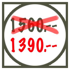Preis-redu_Ende Jahr-2016